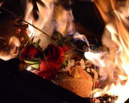 Special Healing Fire Ceremonies (Homas/Pujas) 2
