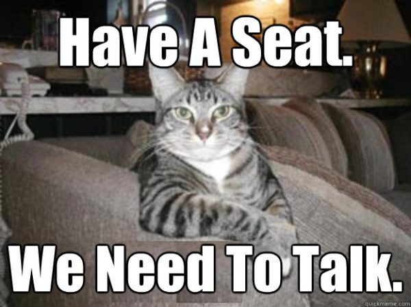 have a seat we need to talk cat meme