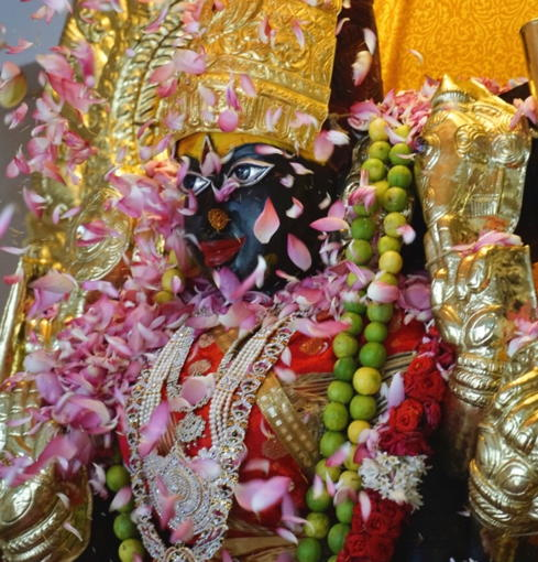 Lotus Petal Coming to Mother Divine